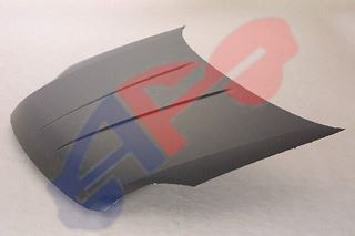 Picture of HOOD 07-12 SENTRA